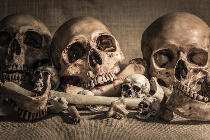 bones under the house