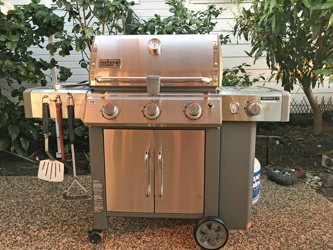 Weber Elektrogrill Vs Gasgrill : The charcoal vs gas grill debate comes home to roost