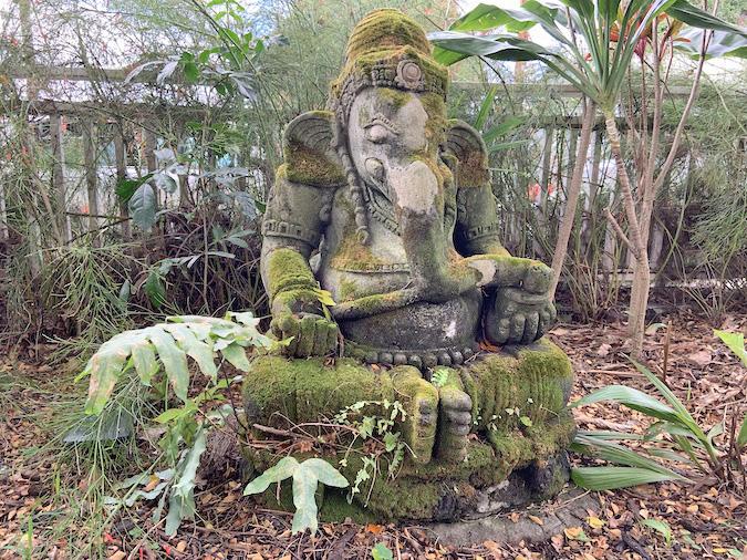 Holualoa Artist Enclave