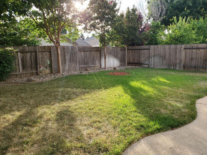 Elk Grove 4 bedroom backyard